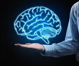 Bilgi Felsefesi (Epistemoloji) 4