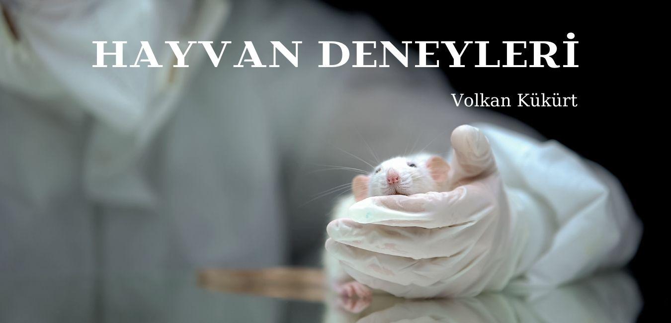 Hayvan Deneyleri 1